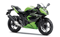 Single-Cylinder 2014 Kawasaki Ninja 250 Revealed