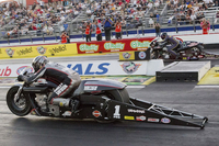 NHRA: Round #1 – Gatornationals Pro Stock H-D Race Preview