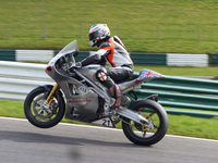 Cameron Donald to Ride for Norton Factory Team at 2014 Isle of Man TT Races