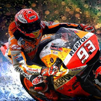 Marquez thrills to match premier class pole record